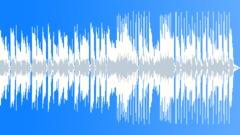 Happy Positive Texas Roadhouse Boggie Blues 30sec edit - stock music