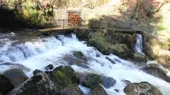 Triberg Waterfalls closeup 2 Stock Footage
