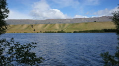 New Zealand Cromwell Lake Dunstan lakeshore slopes framed by trees Stock Footage