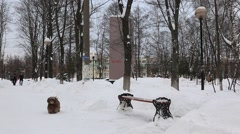 Zhekeznodorozny. Bench covered with snow. People walking. Winter 2012 Stock Footage