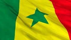 Senegal flag Seamless - stock footage