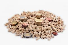 Euro coins and wood pellets - stock photo