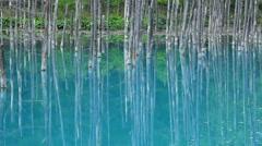Blue pond, Hokkaido, Japan Stock Footage