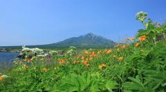Senboshi Misaki Park, Hokkaido, Japan Stock Footage