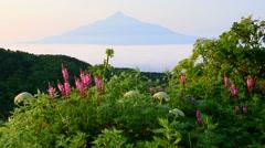 Rishiri Island, Hokkaido, Japan Stock Footage