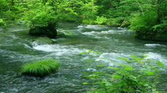 Clear water stream Stock Footage