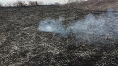 Fire rages in long grass, foreground Stock Footage