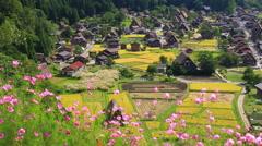 Shirakawa Village, Gifu Prefecture, Japan Stock Footage