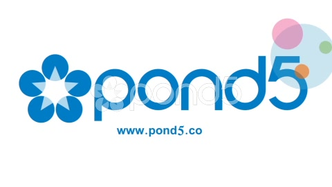 After Effects Project - Pond5 Simple And Clean Logo Reveal 49091265