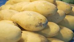 Mangos for sale in farmer's market - stock footage