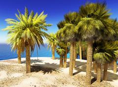 Lush oasis landscape on desert Stock Illustration
