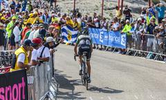The Cyclist Robert Gesink - stock photo