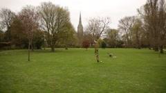 Salisbury Cathedral and Elizabeth Gardens Stock Footage