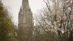 Salisbury Cathedral Stock Footage