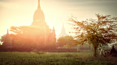 Farmer drives bullock cart through amazing sunset landscape at Bagan. Myanmar Stock Footage