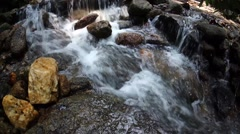 Clean and fresh streams in the forest at Bukit Saga, Ampang, Selangor, Malaysia Stock Footage