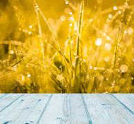 Grass with water droplets at sunrise and wooden planks floor Stock Illustration