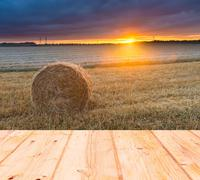 Stubble field at sunset with old wooden planks floor on foreground Stock Photos