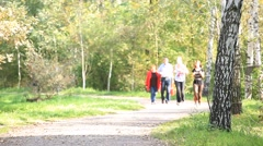 MOSCOW, RUSSIA - 2012: elderly couple walking in the park Stock Footage