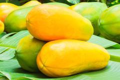 Ripe papaya,Fruit healthy. - stock photo