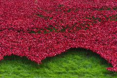 Tower of London Remembrance Day Poppies Art Installation - stock photo