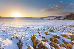 Snowy field at sunset under blue skies Stock Photos