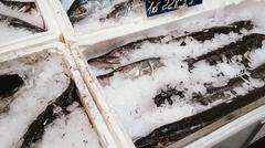 Plenty of fresh raw fish in supermarket - stock photo