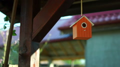 House For Birds Stock Footage