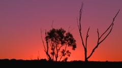 Australian Sunset Landscape Establishing Shot Stock Footage