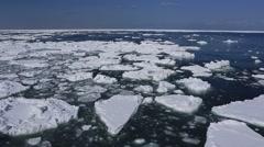 Drift Ice, Hokkaido, Japan Stock Footage