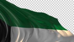 Stock Video Footage of Flag of Kuwait