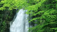 Mikaeri Waterfall, Akita Prefecture, Japan Stock Footage