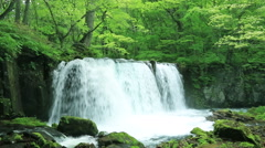 Choshi Waterfall, Aomori Prefecture, Japan Stock Footage