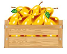 Box with pear Stock Illustration