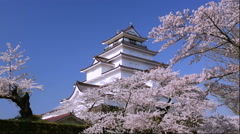 Cherry blossoms at Tsuruga Castle, Fukushima Prefecture, Japan Stock Footage