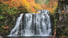 Nino Waterfall, Akita Prefecture, Japan Stock Footage