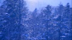 Diamond dust and rimed trees, Hokkaido, Japan Stock Footage