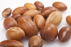 seeds of argan on white,a close up - stock photo