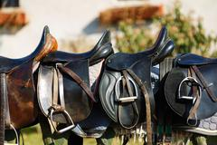 Leather saddle horse - stock photo