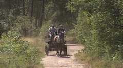 Horse and carriage couple Stock Footage