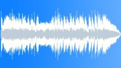 Fun 12 bar Blues 20sec edit Stock Music