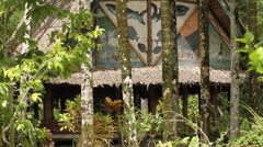 Traditional Men's House in Jungle - PALAU Stock Footage