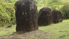 Ancient Stone Pillars in National Park- PALAU Stock Footage