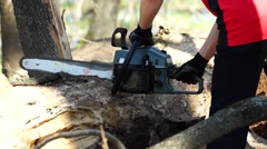 Sawing wood with a chainsaw. Stock Footage
