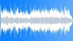 Energetic Hard Country Rock 20sec edit Stock Music