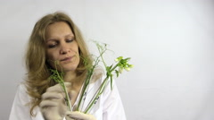 Scientist woman research flasks with genetically modified plants Stock Footage