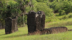Ancient Stone Monoliths in Historical Park - PALAU Stock Footage