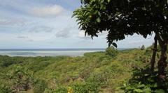 Coastal Aerial view of with Palm Tree - PALAU Stock Footage