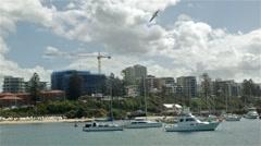 Yacht Boat Harbour Establishing Shot - Wollongong Illawarra NSW Stock Footage