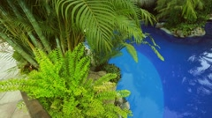 Beautiful pool  under trees at vacation spot Stock Footage